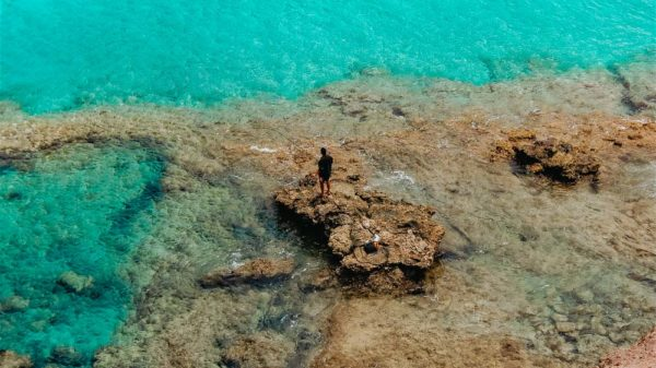 Fuerteventura_Jandia_Fischer