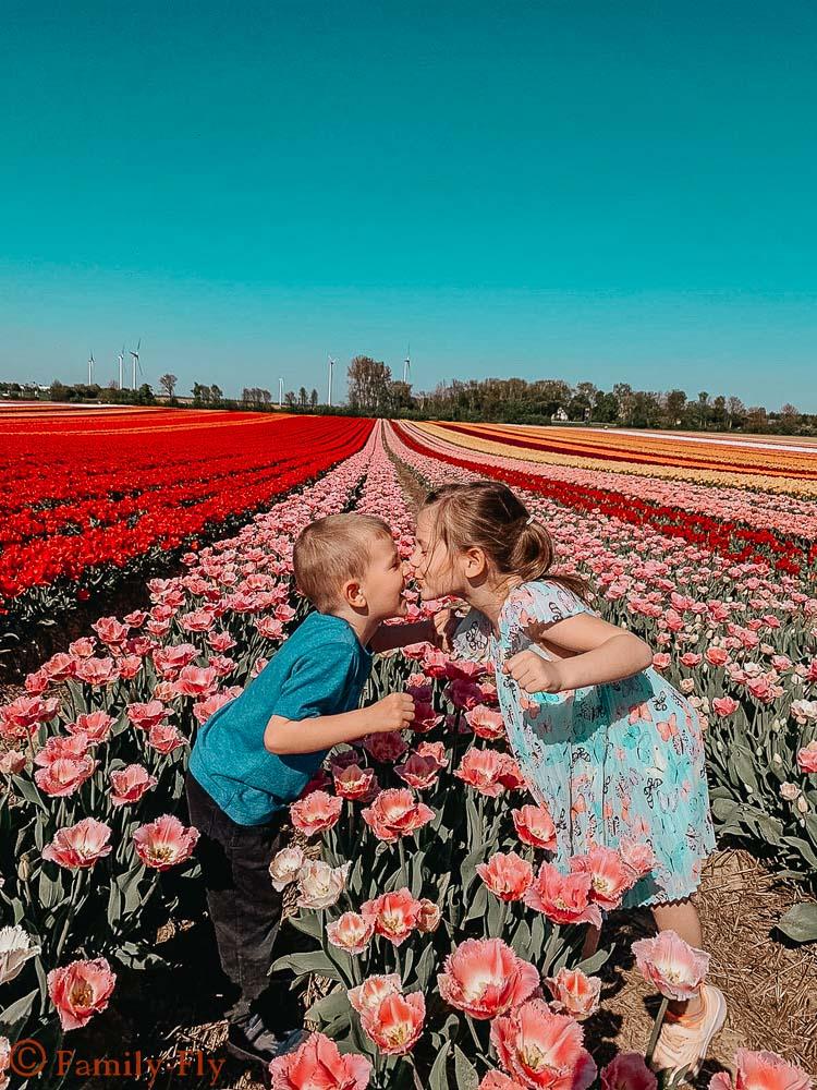 Tulpenfelder_Kinder_Kuss