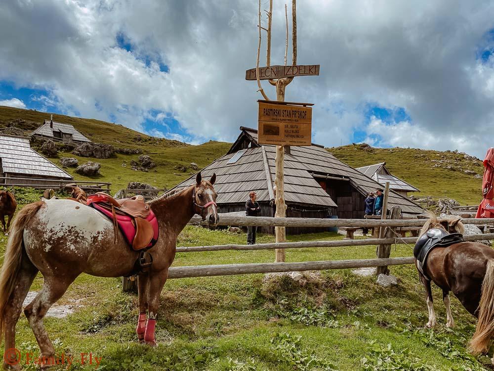 Pferde Reiten Velika Planina