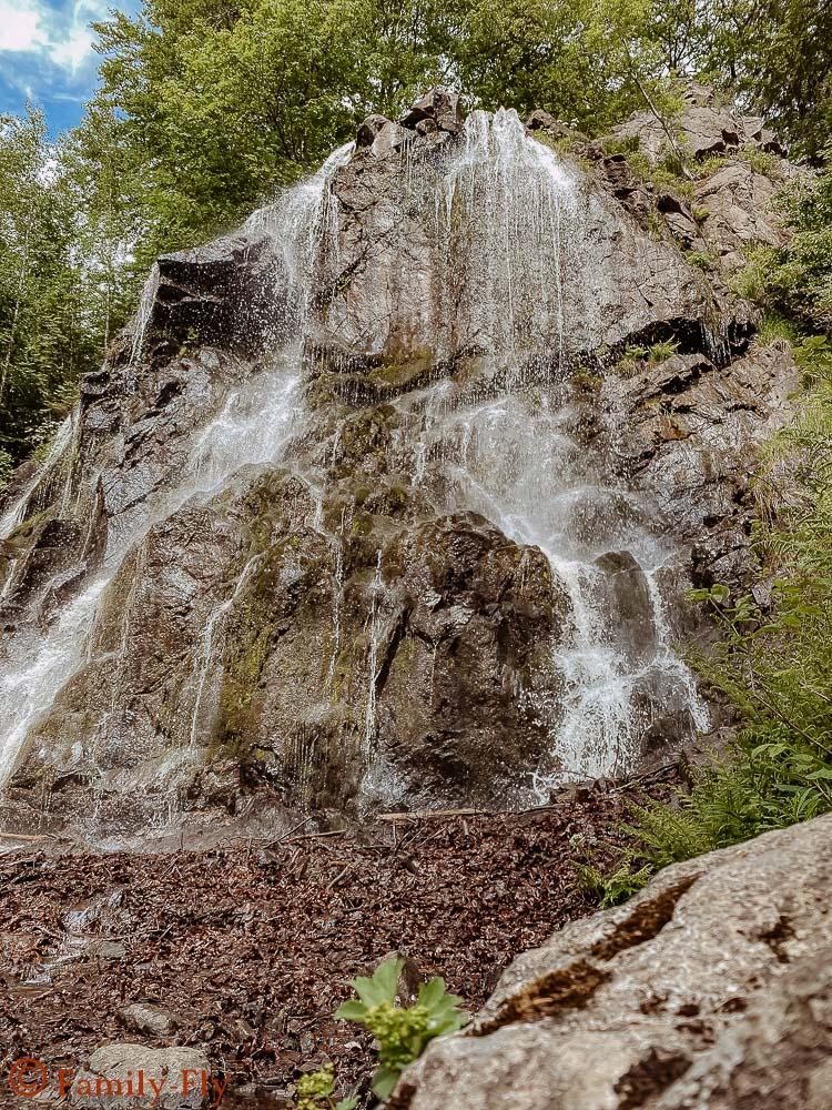 Königshütter Wasserfall Top 10 Highlights im Harz
