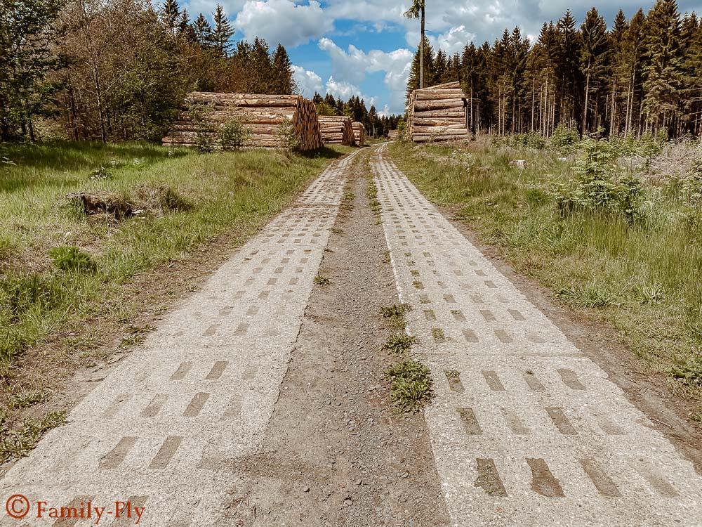 Top 10 Highlights im Harz Grenze